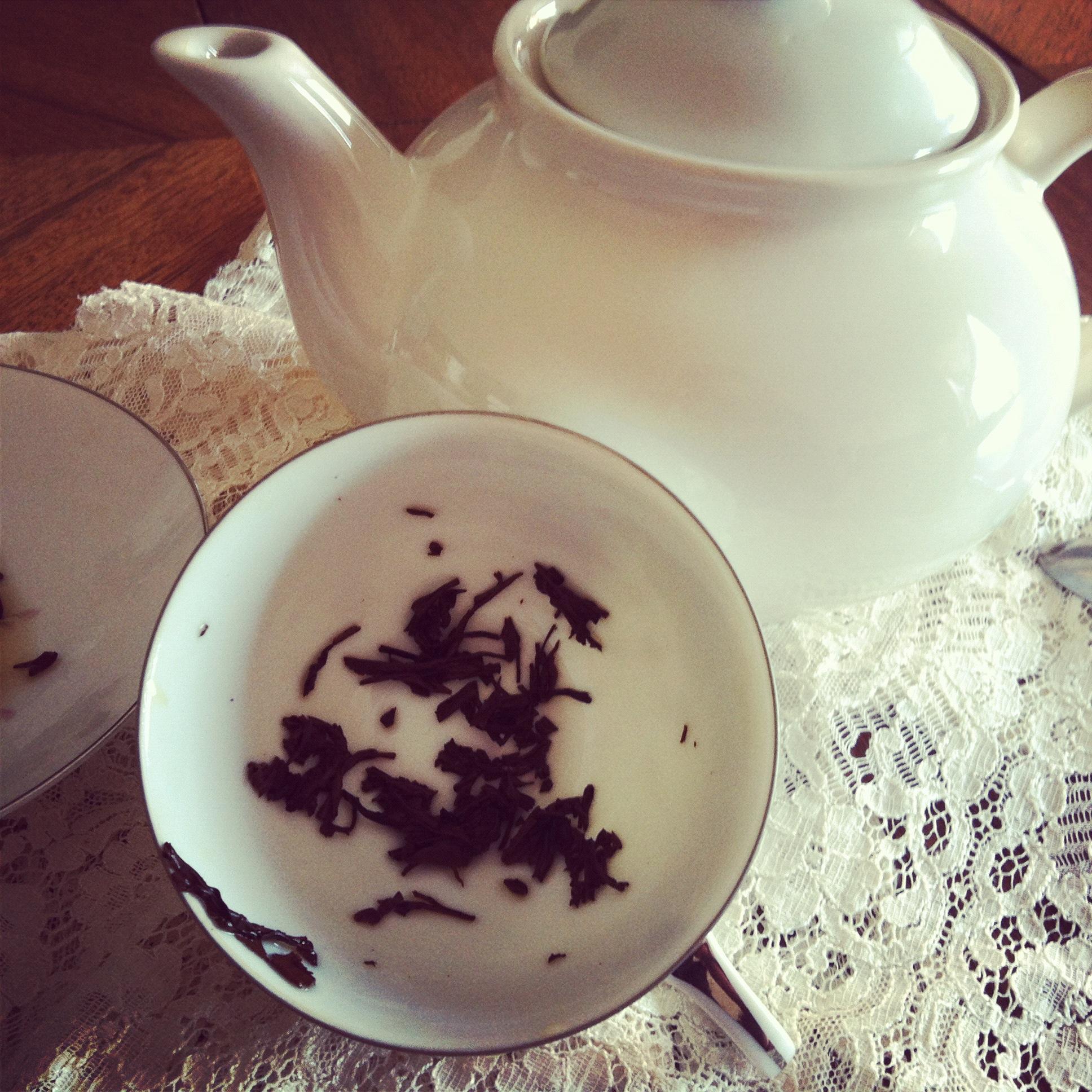 Tea Leaf Reading Shaheen Miro Insights